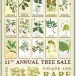 #246 – 11th Annual Trees Atlanta Tree Sale Tomorrow – Saturday, October 9, 2010