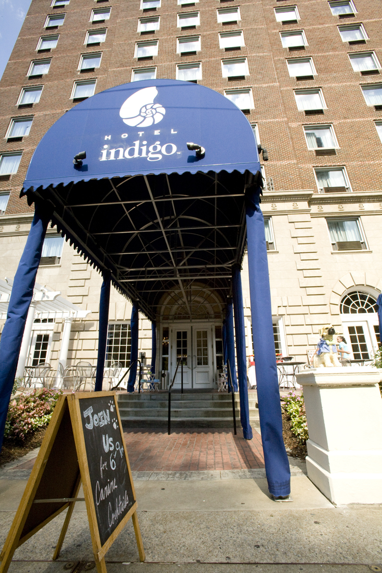 Hotel Indigo in Midtown Hosts Canine Cocktails, Thursdays Through June 2, Starting Tonight!